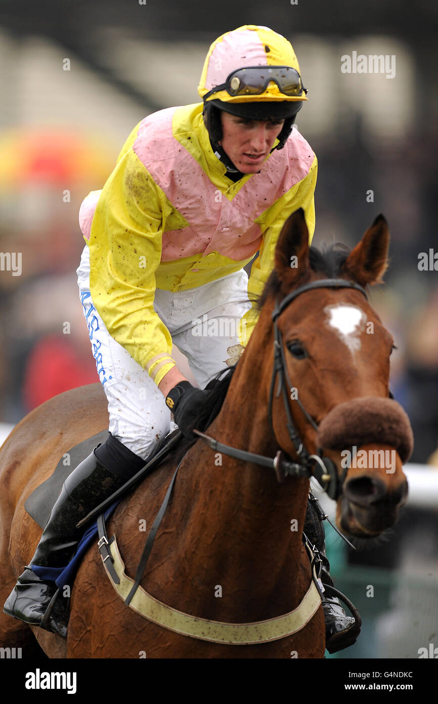 Horse Racing - Midweek Jumps - Warwick Racecourse - Stock Image