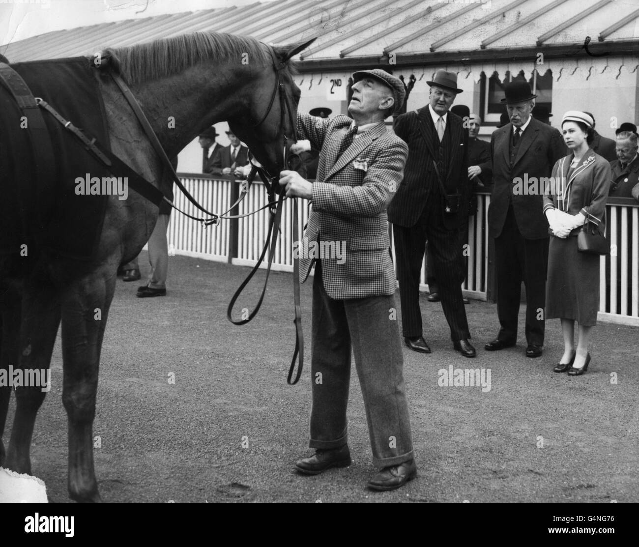 Horse Racing - Coventy Three Year Old Stakes - Kempton Park - Stock Image