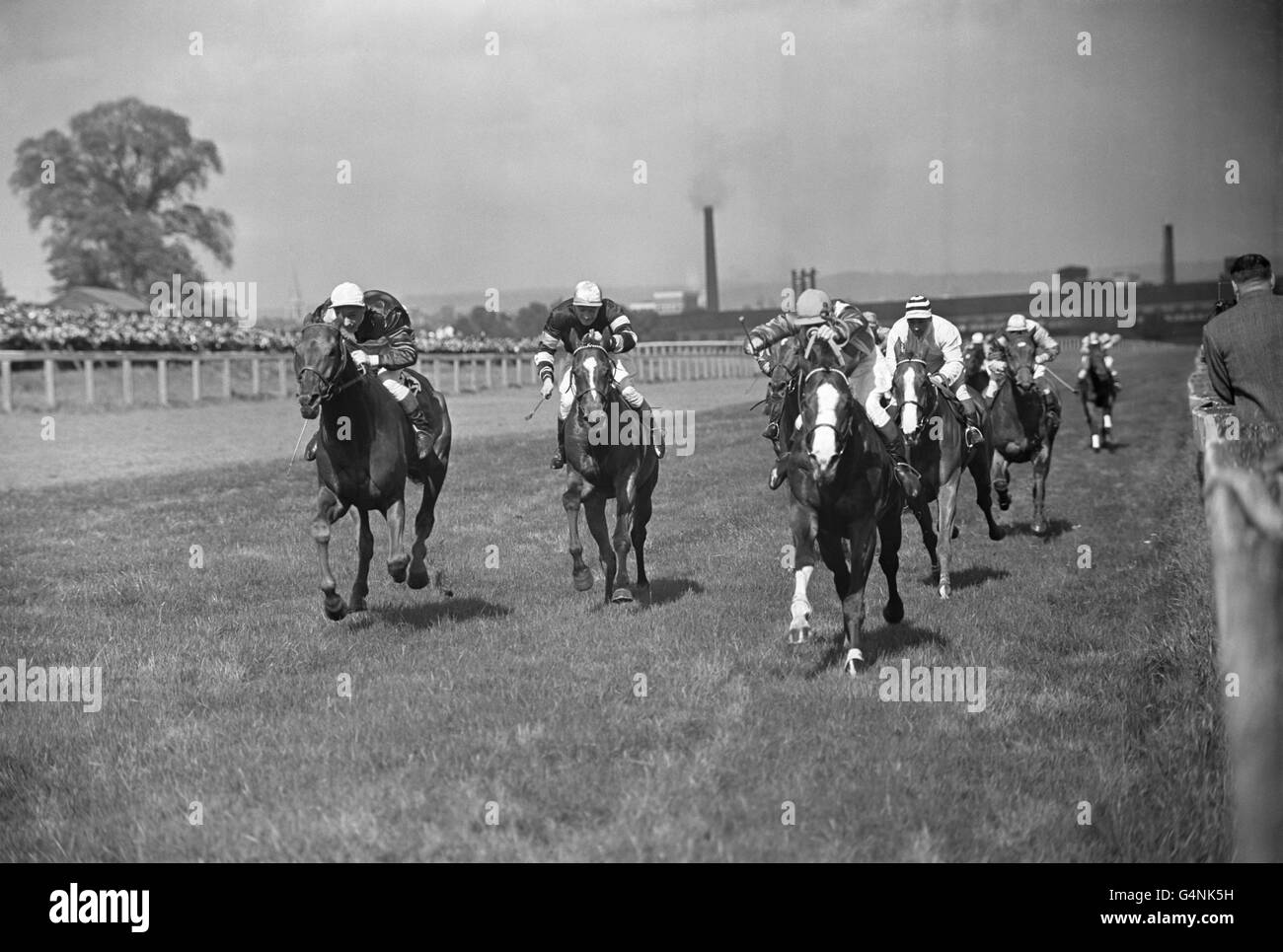 Horse Racing - Alexandra Palace - London Stock Photo