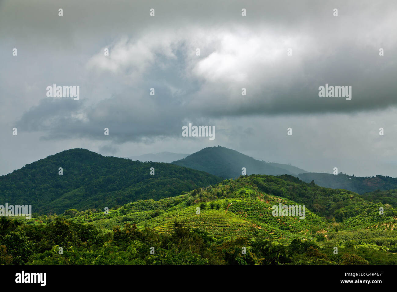 The rainy season on the island of Phuket in Thailand. - Stock Image