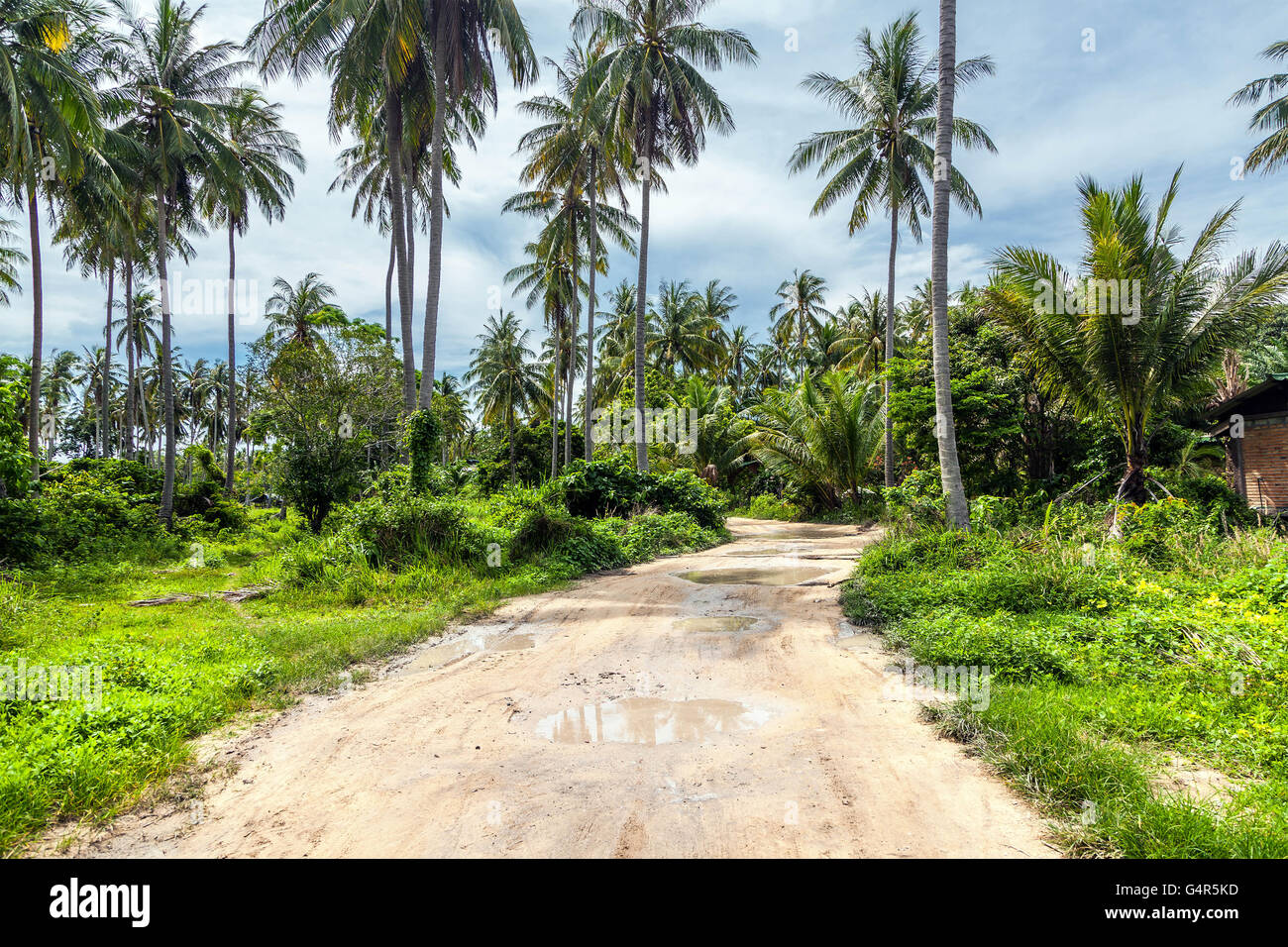 Tropical island of Racha in Thailand - Stock Image