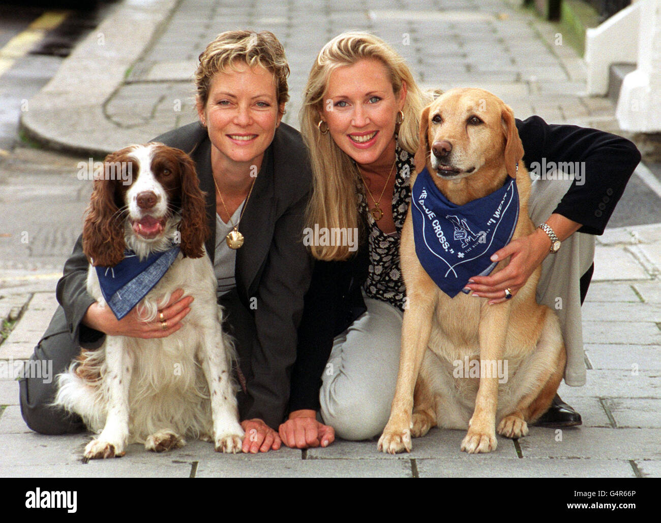 Dog to work day/Seagrove - Stock Image