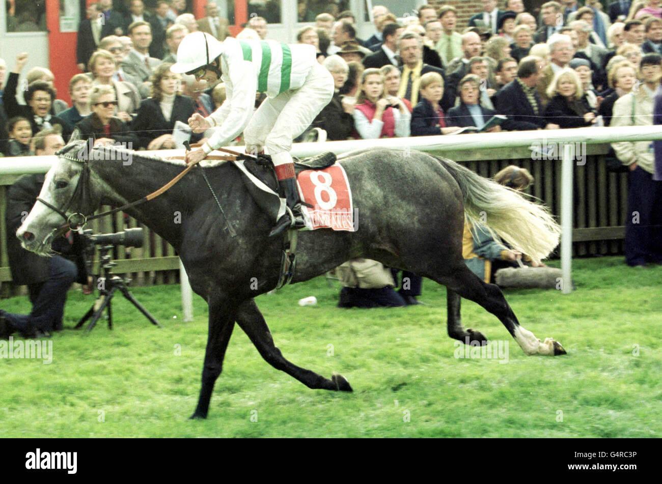 Racing/Newmarket/Alborada - Stock Image