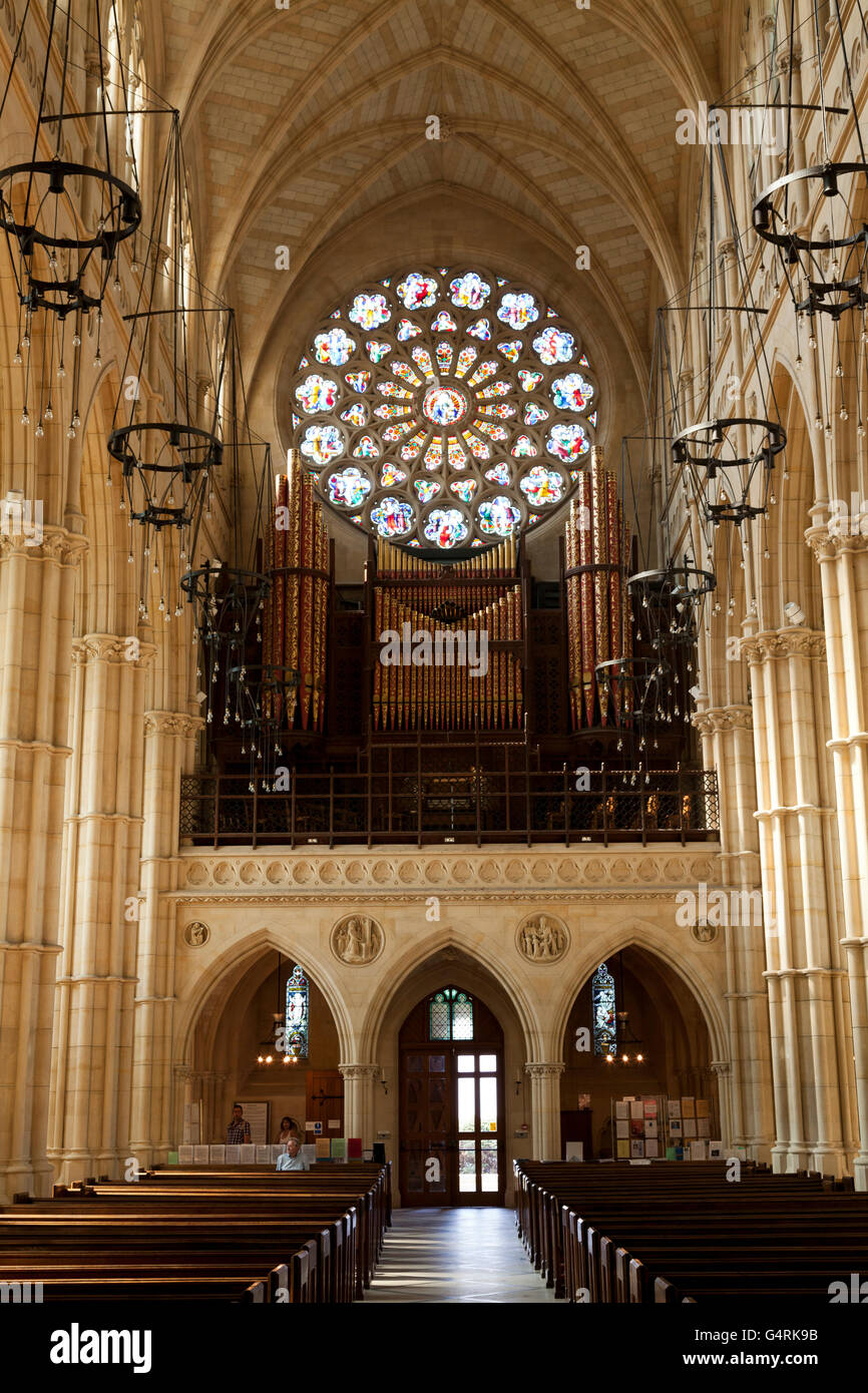 Interior of the Cathedral Church of Our Lady and St Philip Howard, rose window and aisle, Arundel, West Sussex, - Stock Image