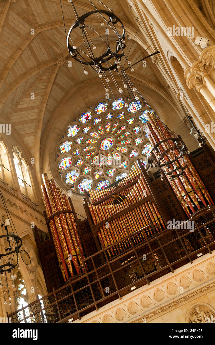 Interior of the Cathedral Church of Our Lady and St Philip Howard, rose window, Arundel, West Sussex, England, United - Stock Image