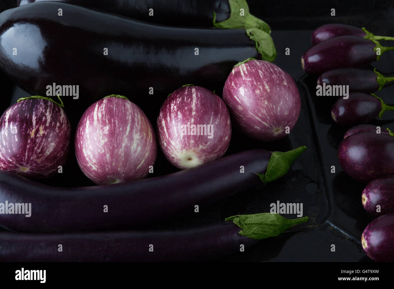 Eggplant varieties arranged on baking tray closeup - Stock Image