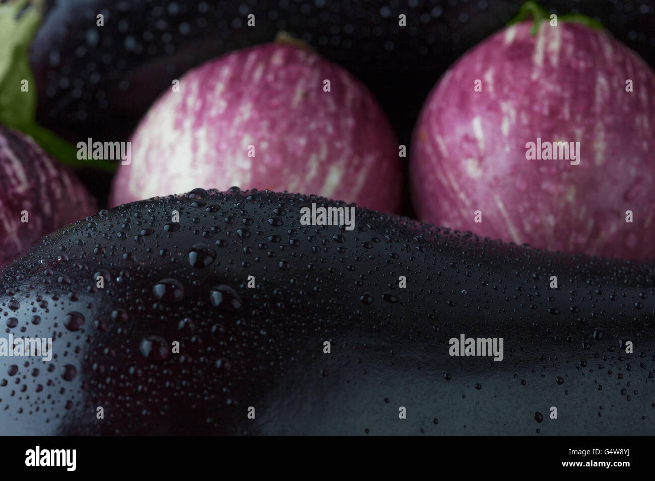 Wet black and purple striped eggplants extreme closeup. Shallow depth of field - Stock Image