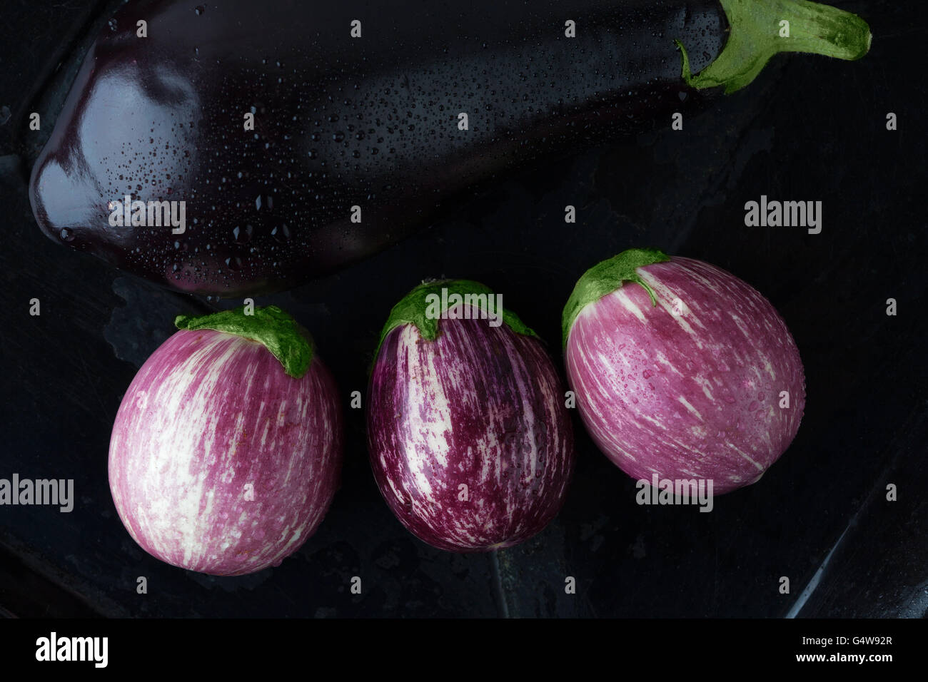 Wet black and purple striped eggplants closeup. Top view. - Stock Image