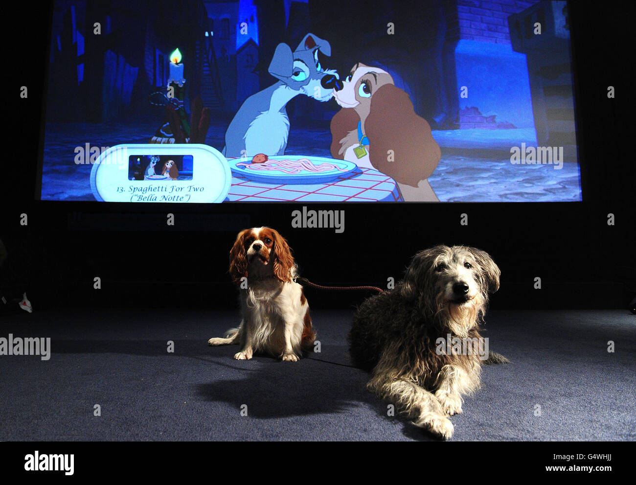 The Lady And The Tramp Disney High Resolution Stock Photography And Images Alamy