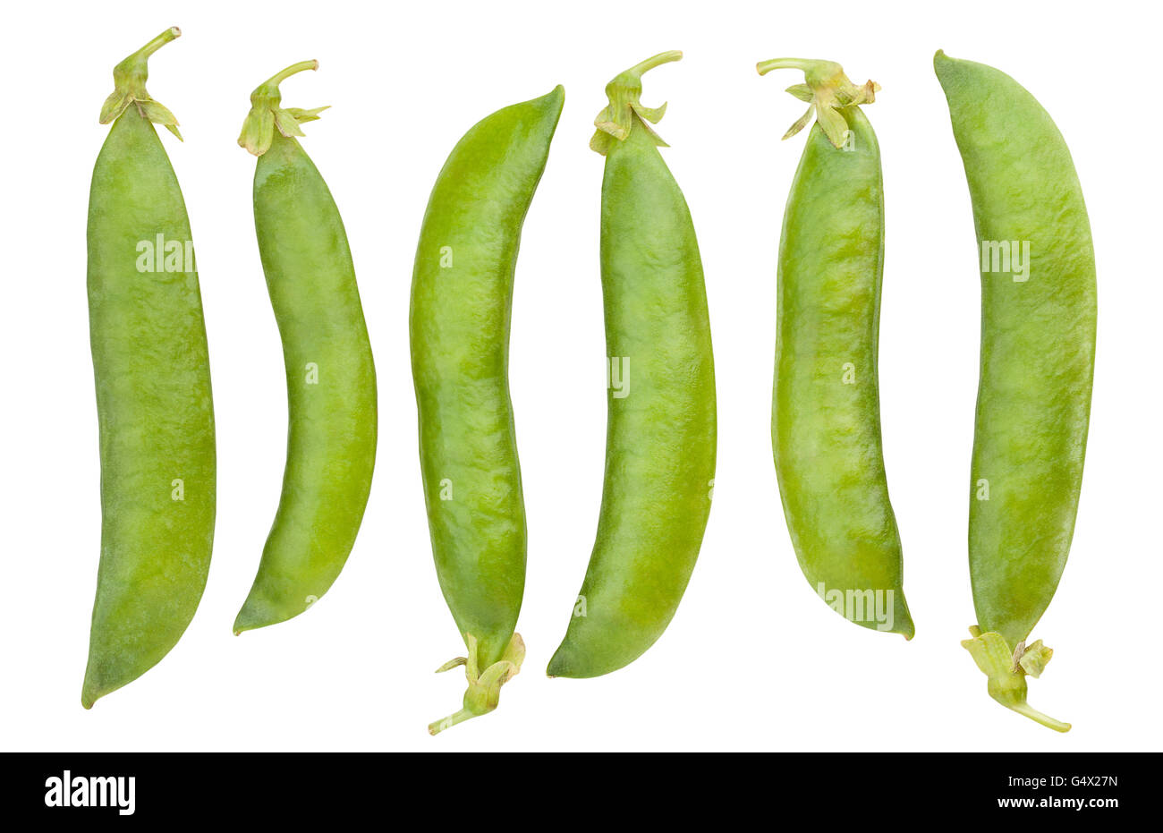 peas in a pod isolated - Stock Image