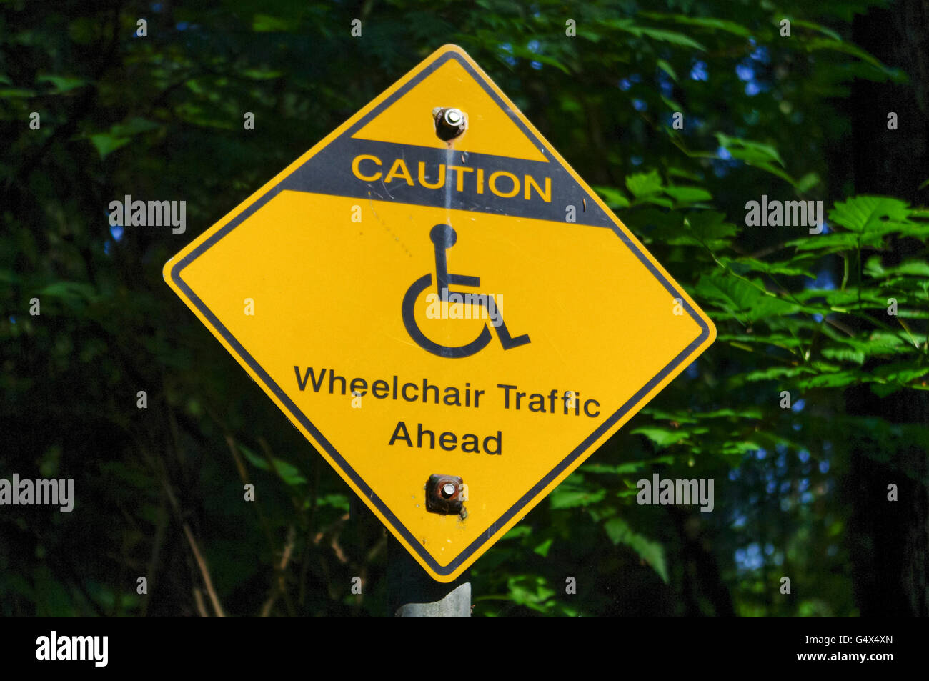 """Yellow warning sign """"Caution: Wheelchair Traffic Ahead"""" with pictogram in Canada. Stock Photo"""