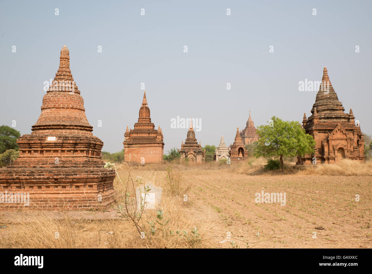 Temples of Old Bagan Archaelogical Zone, Mandalay Region, Myanmar - Stock Image
