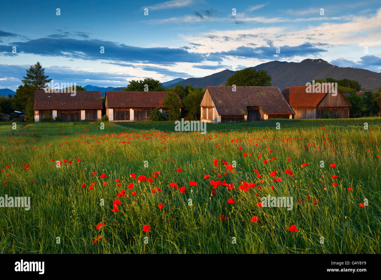 Traditional barns in Turiec region, northern Slovakia. - Stock Image