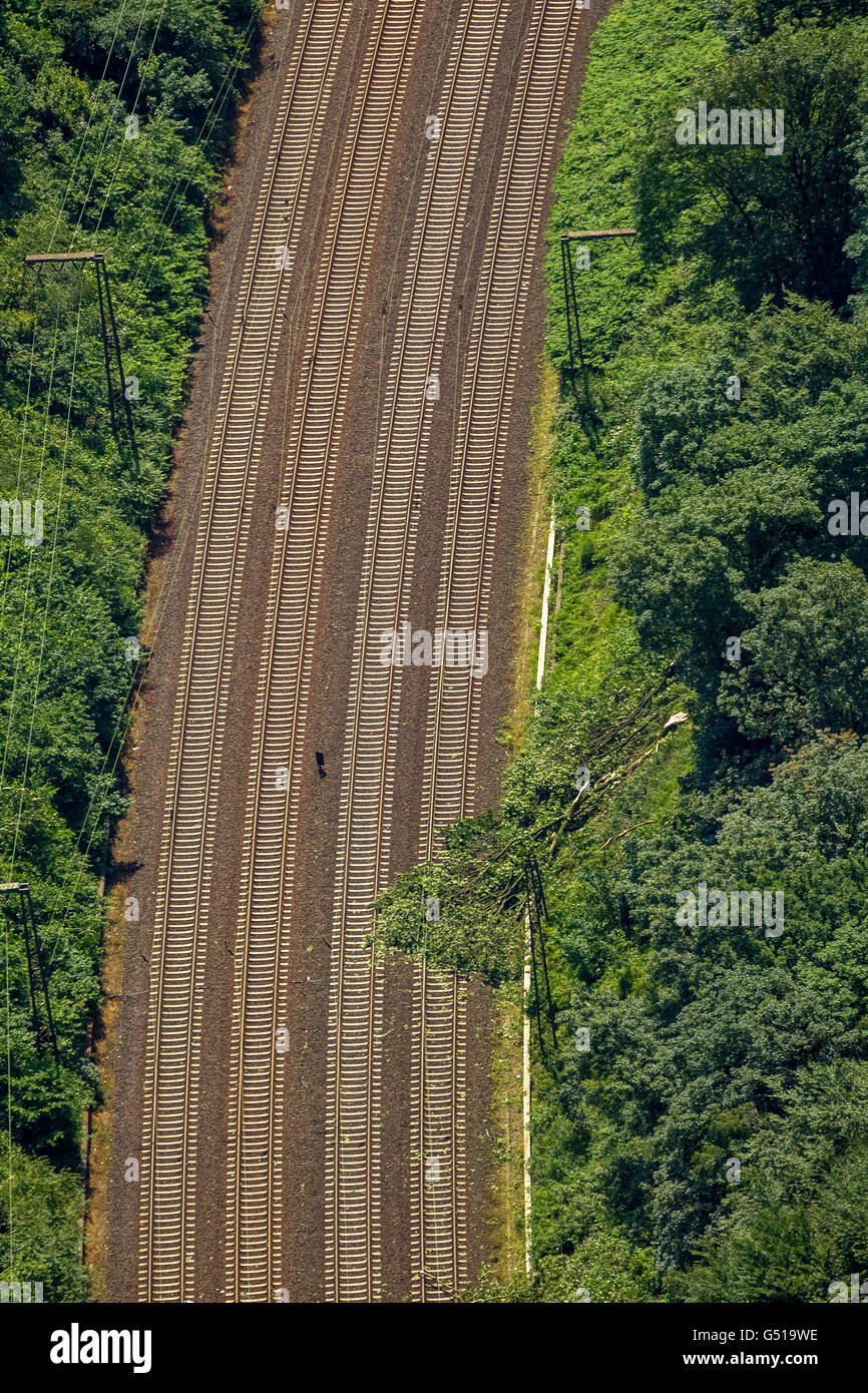 Aerial view, storm damage from the June 9, 2014 and the consequences, trees on the railway line parallel to the - Stock Image