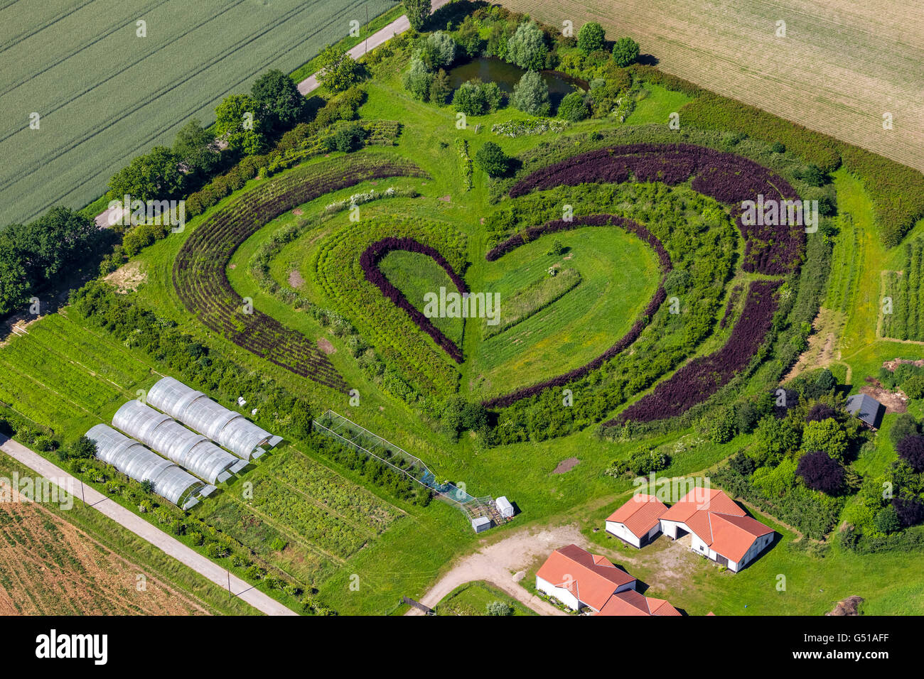 Aerial view, Heart, horticultural company in Waltrop, tree and bush school in the form of a heart, heart shape, Stock Photo