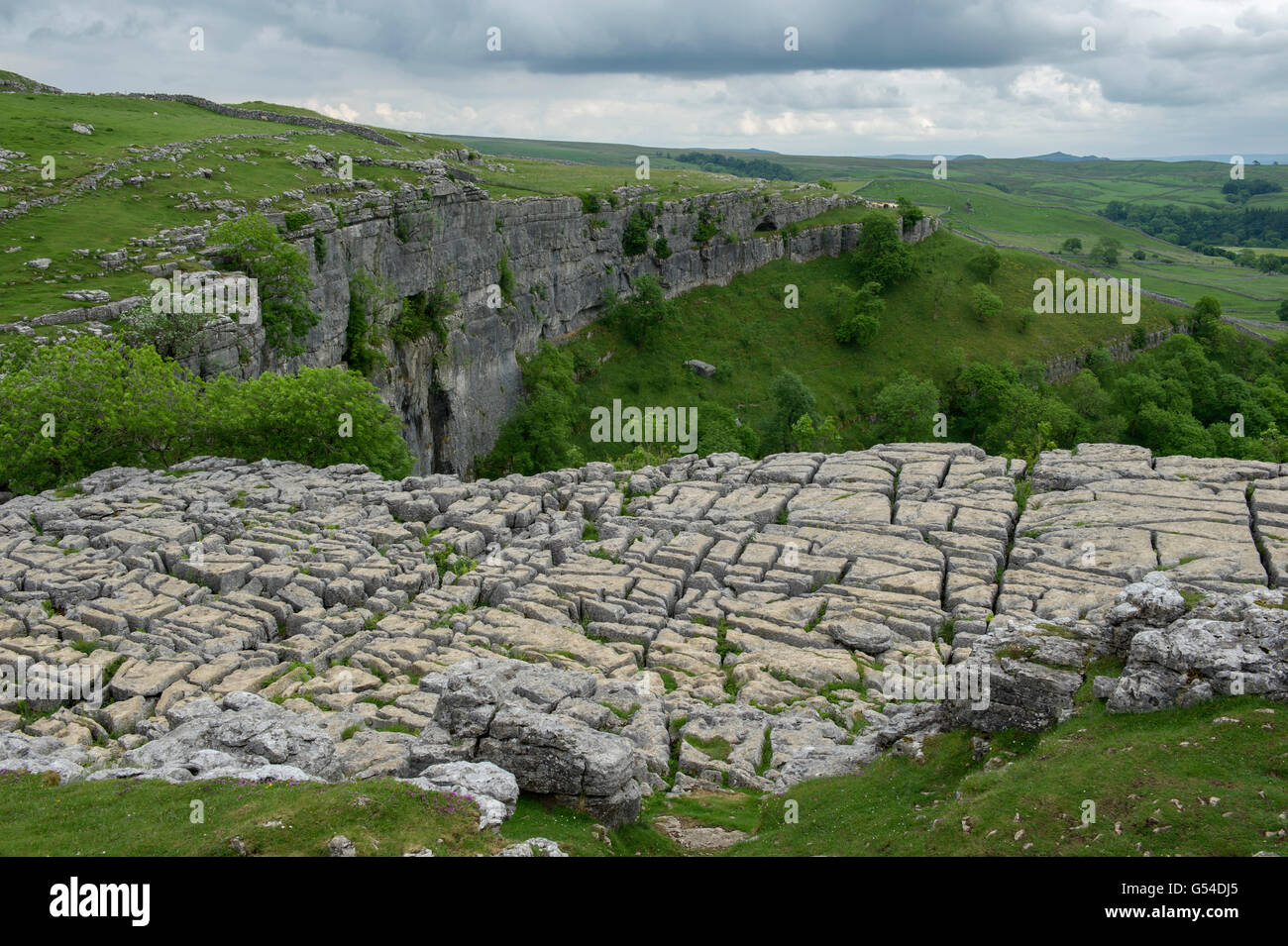 Limestone pavement at top of Malham Cove, Yorkshire Dales National Park, England, UK - Stock Image