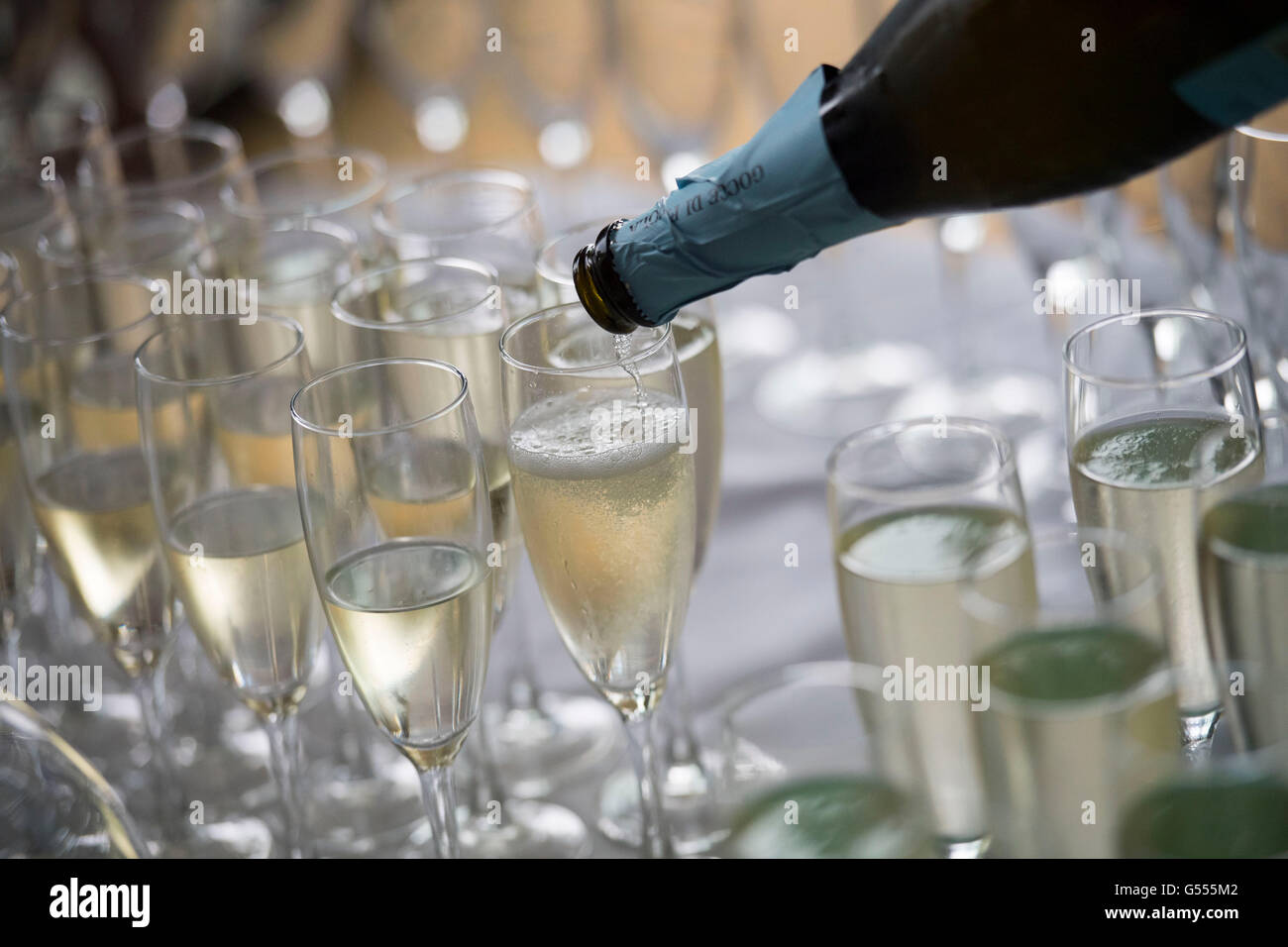 Champagne served in glasses from a bottle during a champagne reception. - Stock Image