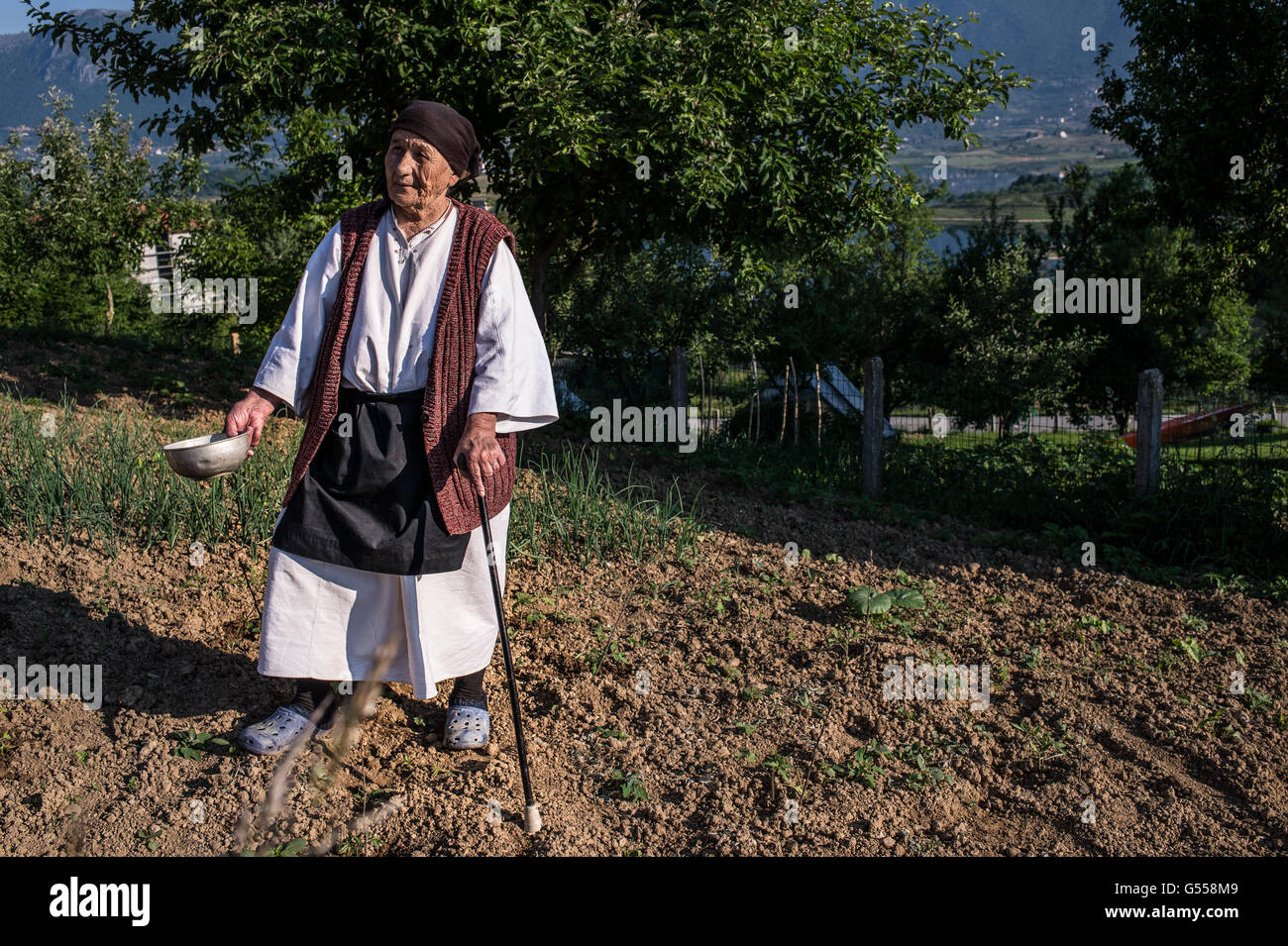 An old women traditional dressed, work the land near the town of Prozor, Bosnia-Erzegovina  Europe. - Stock Image