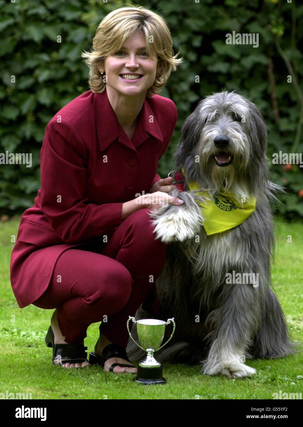 Dog Awards Anthea Turner - Stock Image