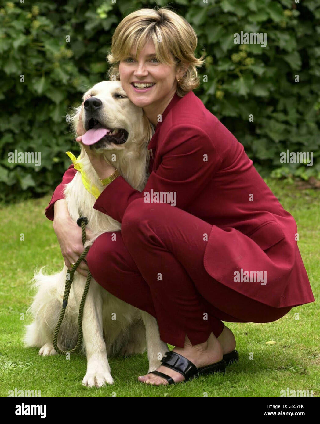 Anthea Turner Top Dog awards - Stock Image