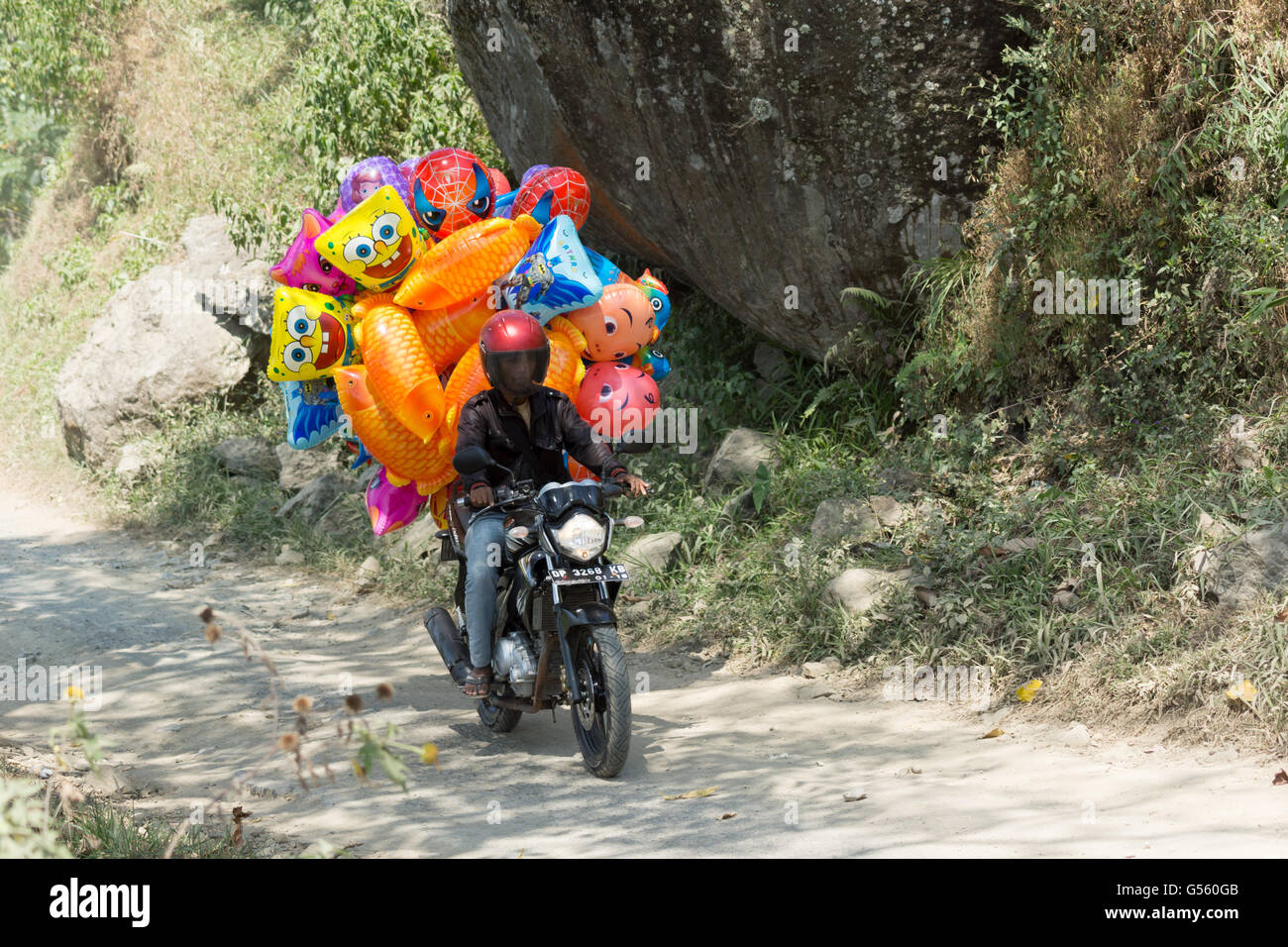 Indonesia, Sulawesi Selatan, Toraja Utara, balloon transport - Stock Image