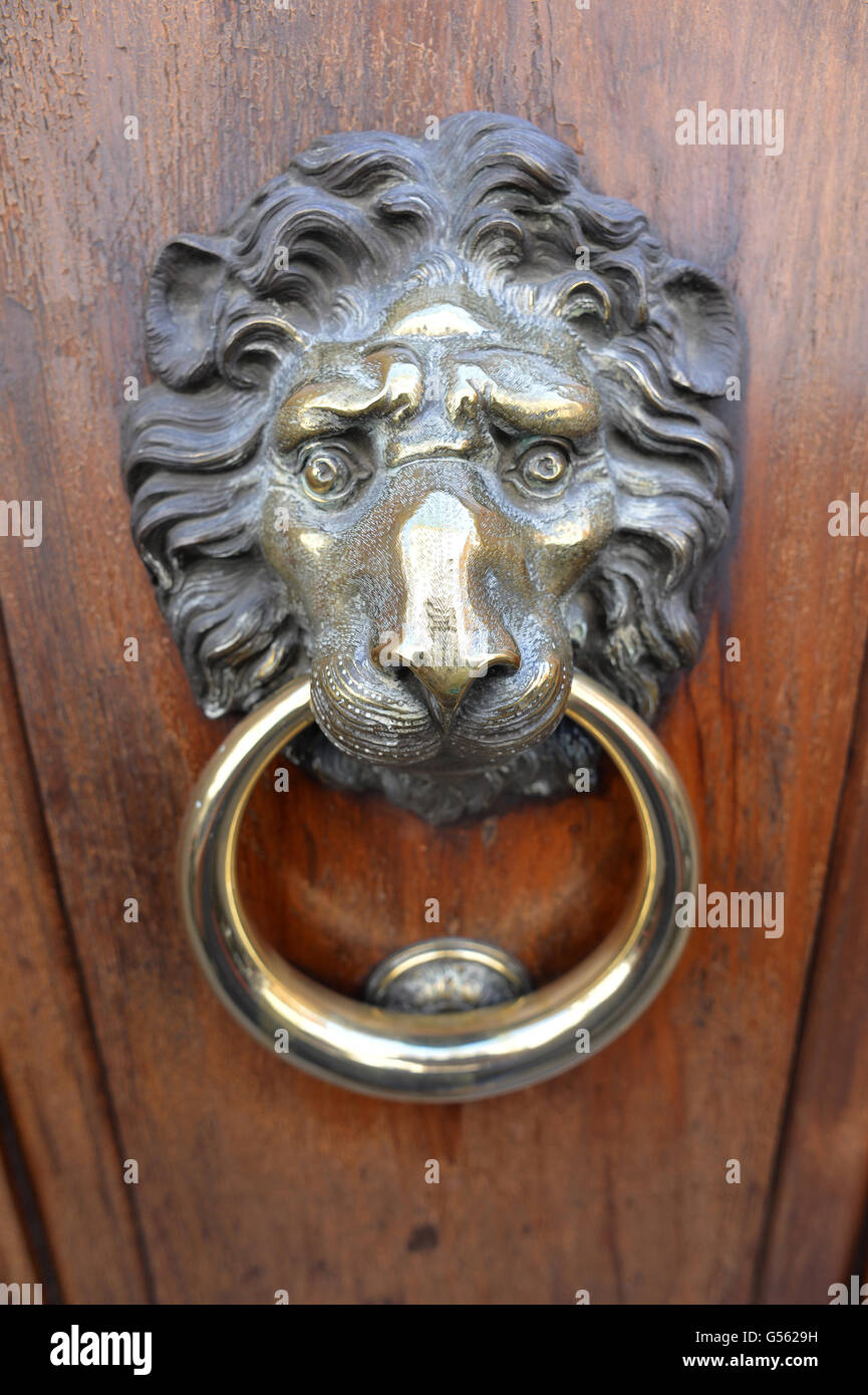 Lion Head Door Knocker Rome