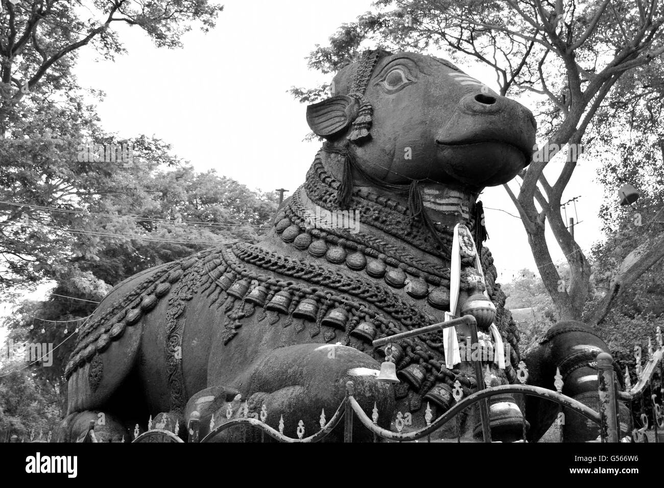 is the name for the bull which serves as the mount (Sanskrit: Vahana) of the god Shiva and as gatekeeper of Shiva - Stock Image