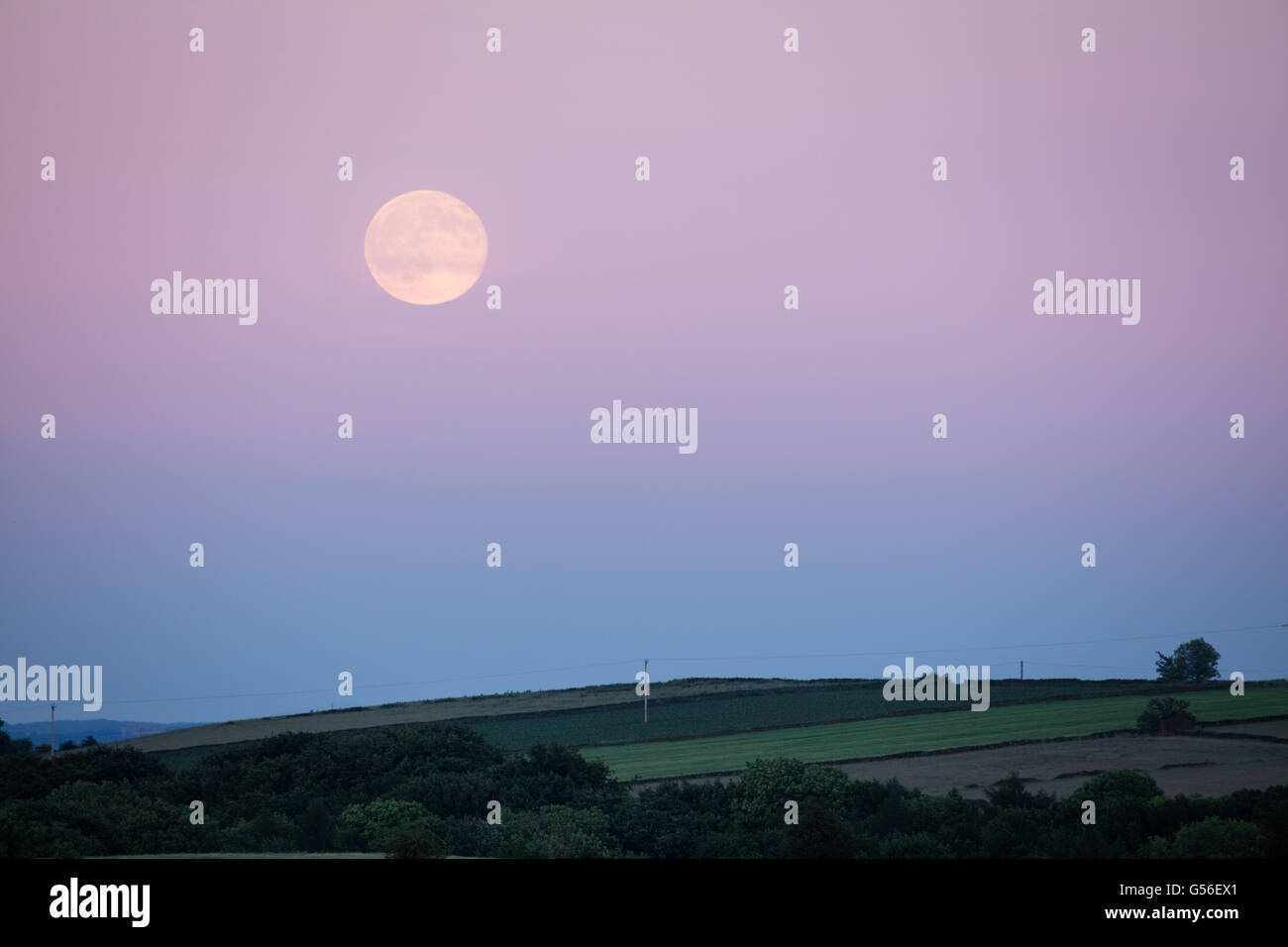 Leash Fen, Derbyshire, UK. 20th June 2016, UK. On the Summer Solstice a 'Strawberry' Moon rises over Burr - Stock Image