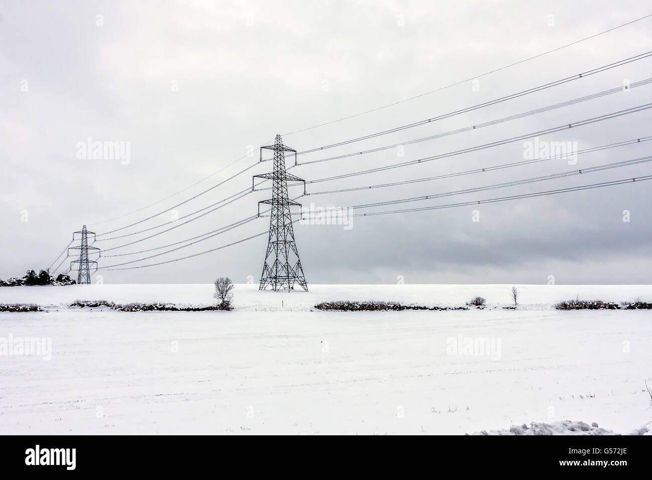 Electric Pylons on the snow at Horndean, Hamsphire - Stock Image