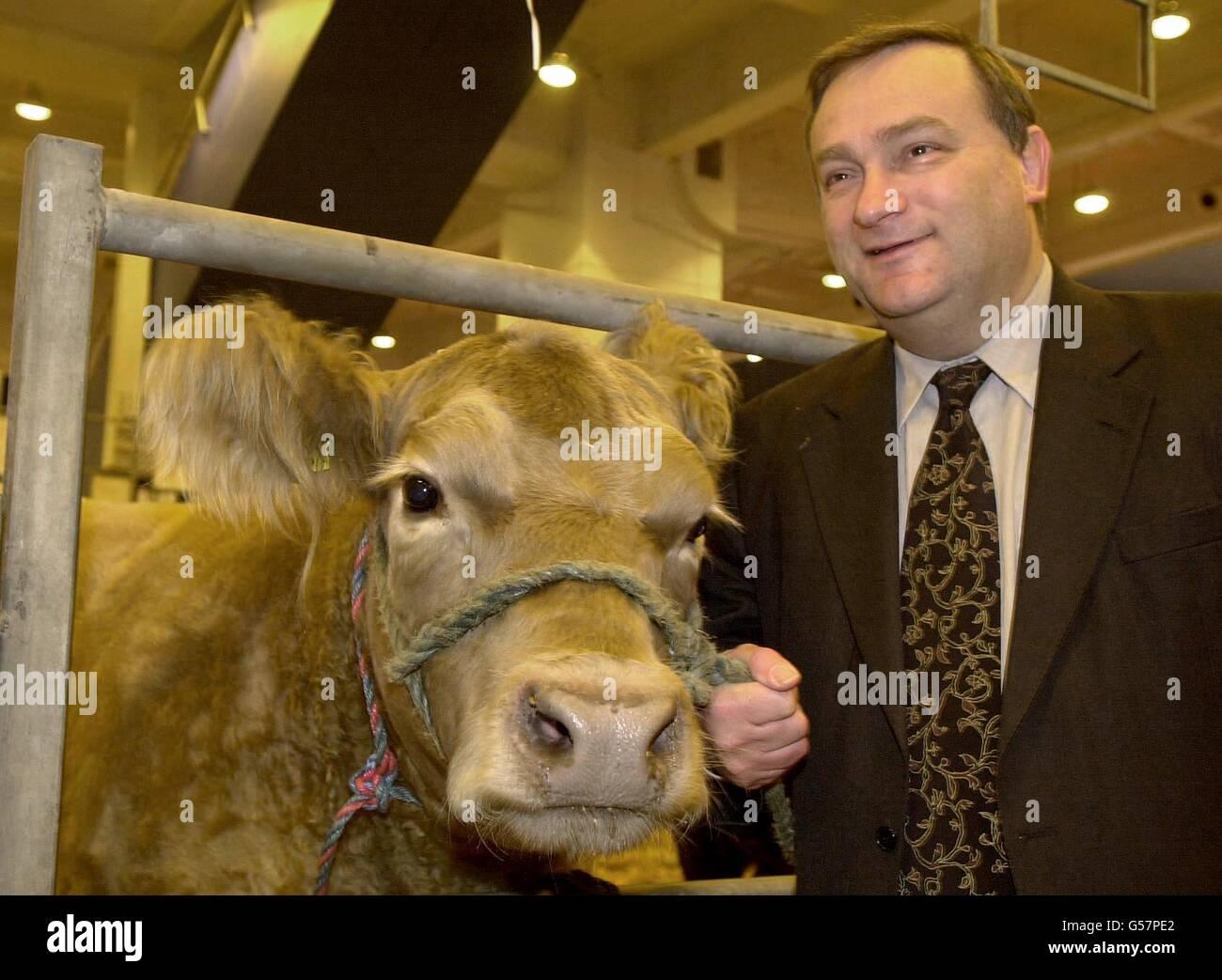 Smithfield Show Nick Brown - Stock Image