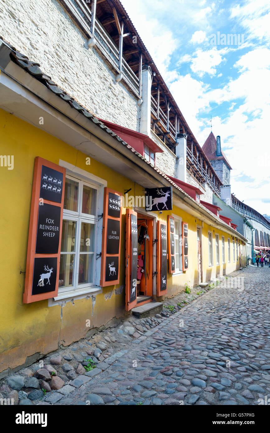 TALLINN, ESTONIA- JUNE 12, 2016: a quiet street in the historic center of Tallinn, Estonia - Stock Image
