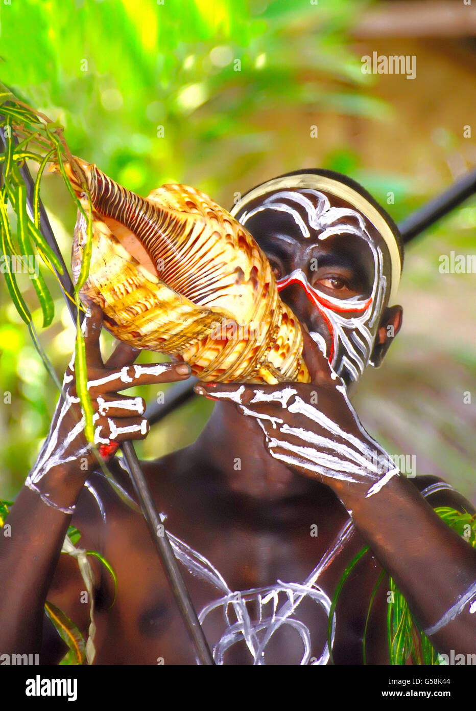 Trobriand Island warrior in tribal cultural festival dress blowing on shell horn at Alotau, Papua New Guinea. - Stock Image