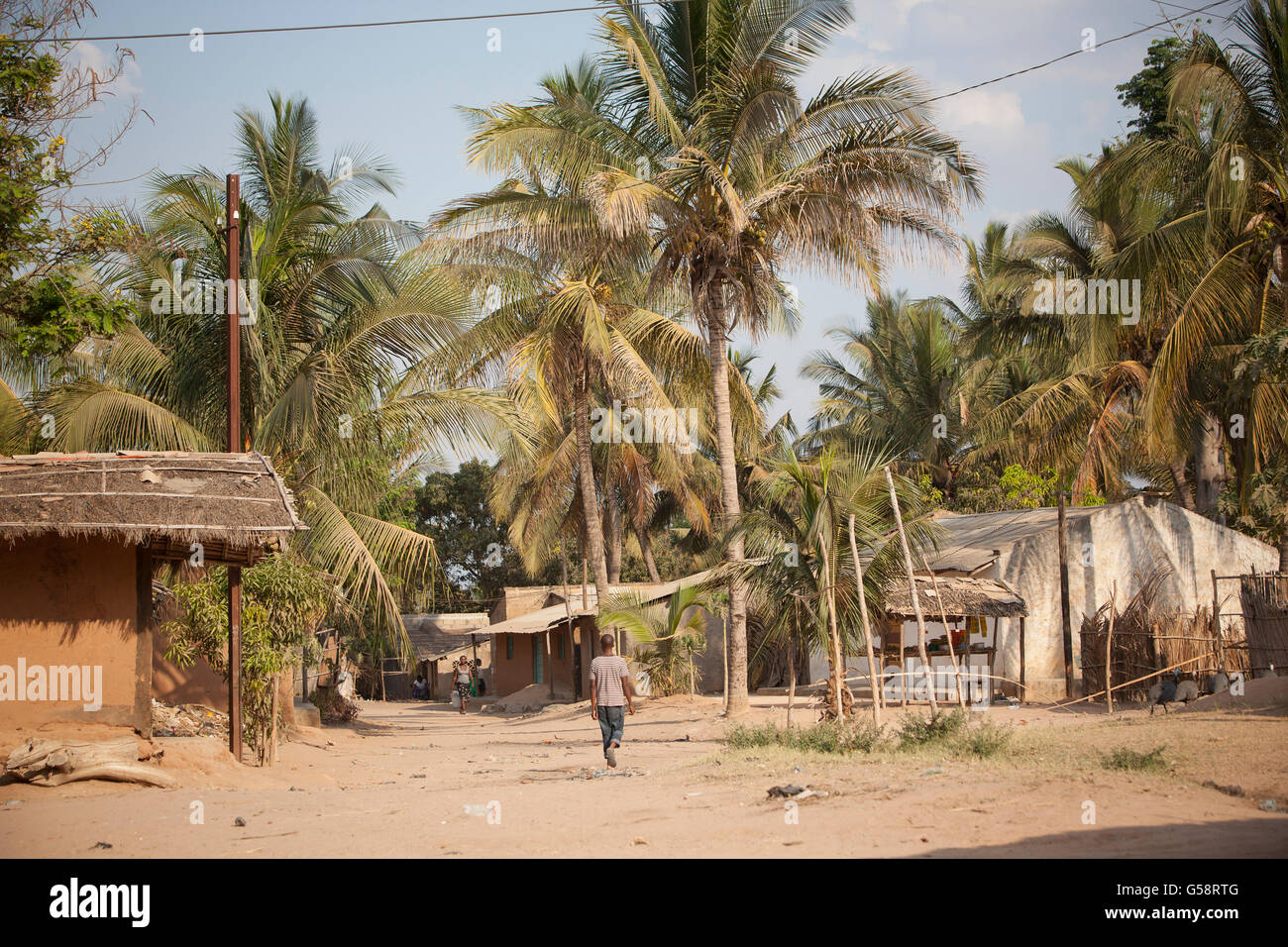 Palm trees tower over a suburban neighborhood in Nampula, Mozambique. - Stock Image