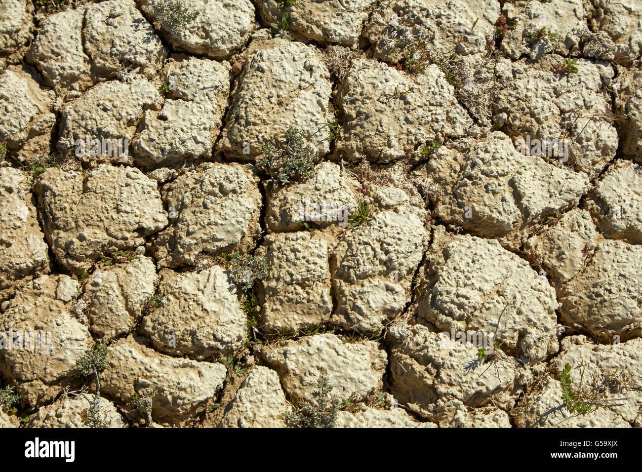 Dry cracked mud, Bannockburn Sluicings, near Cromwell, Central Otago, South Island, New Zealand - Stock Image