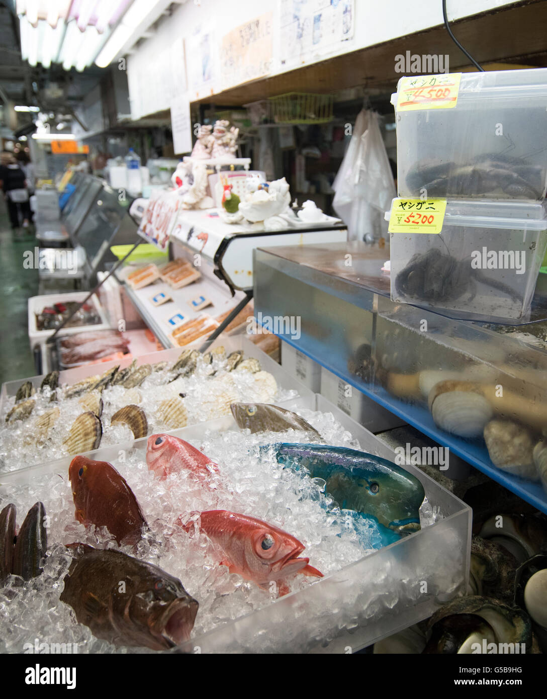 Fish, clams and coconut crabs on sale at Makishi Public Market, Naha City, Okinawa, Japan - Stock Image
