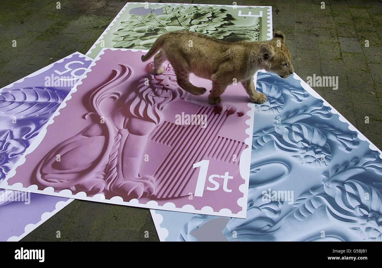 London lion cub stamp launch Stock Photo