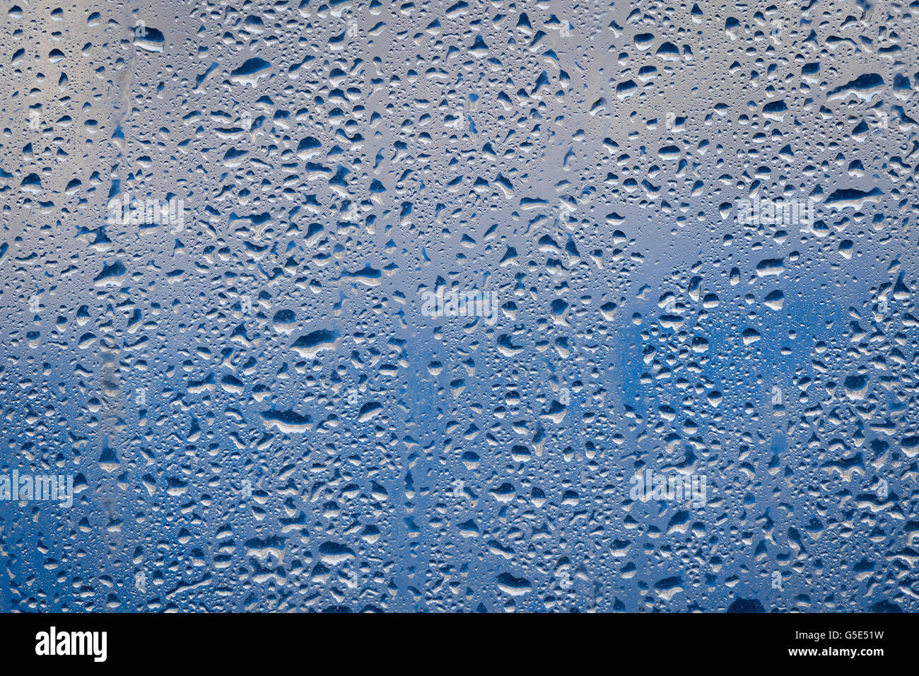 Water drops on a window pane in front of blue background - Stock Image