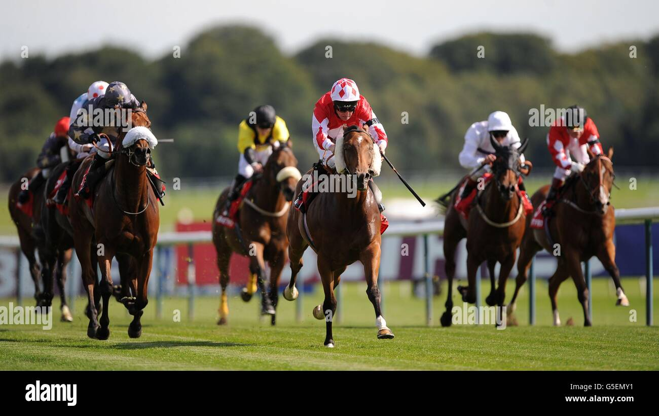 Horse Racing - Betfred Sprint Cup Festival - Day Two - Haydock Park Racecourse - Stock Image