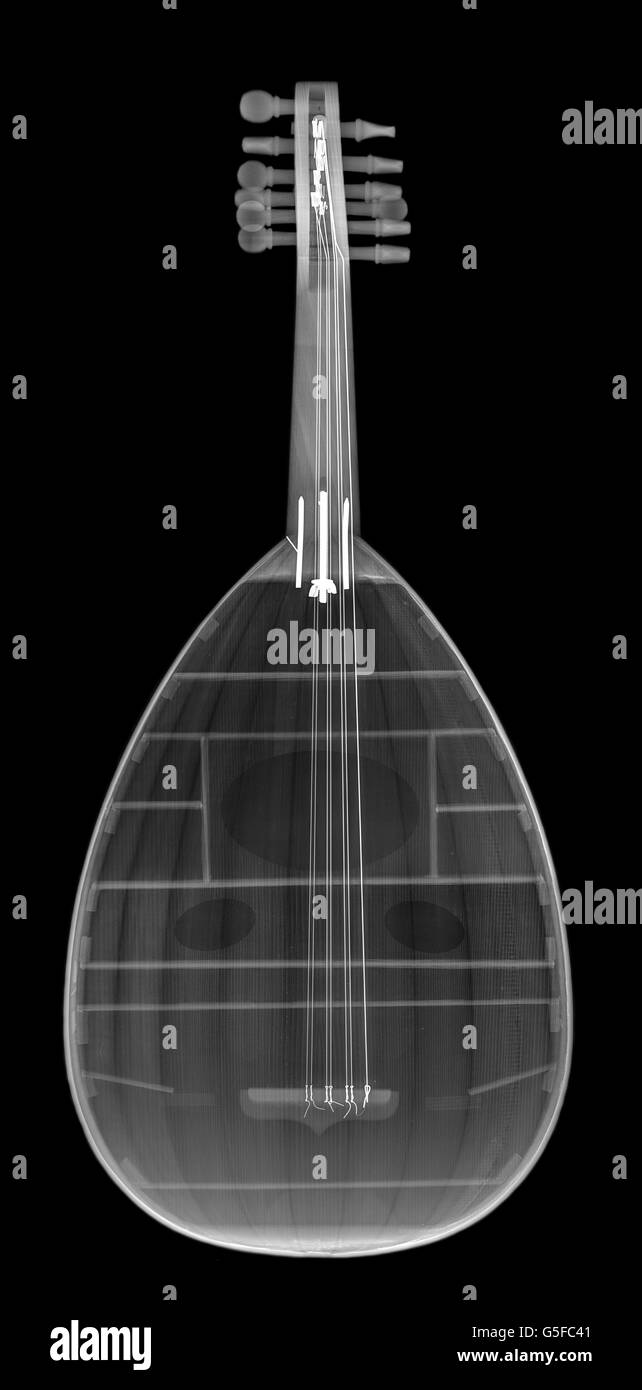 Oud (middle eastern Lute) under x-ray - Stock Image