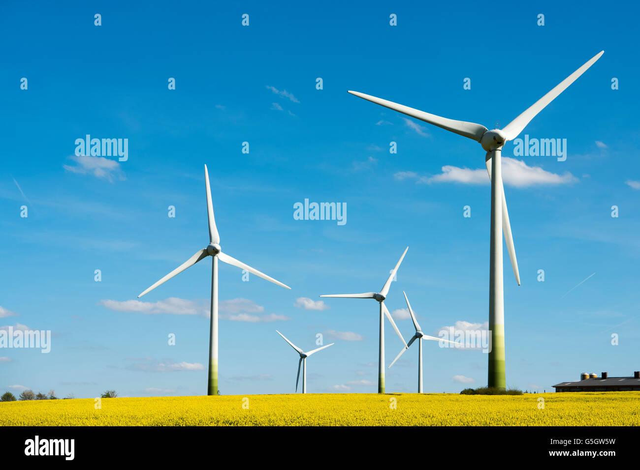 Deutschland, Nordrhein-Westfalen, Kreis Soest, Warstein-Belecke, Windpark Belecke - Stock Image