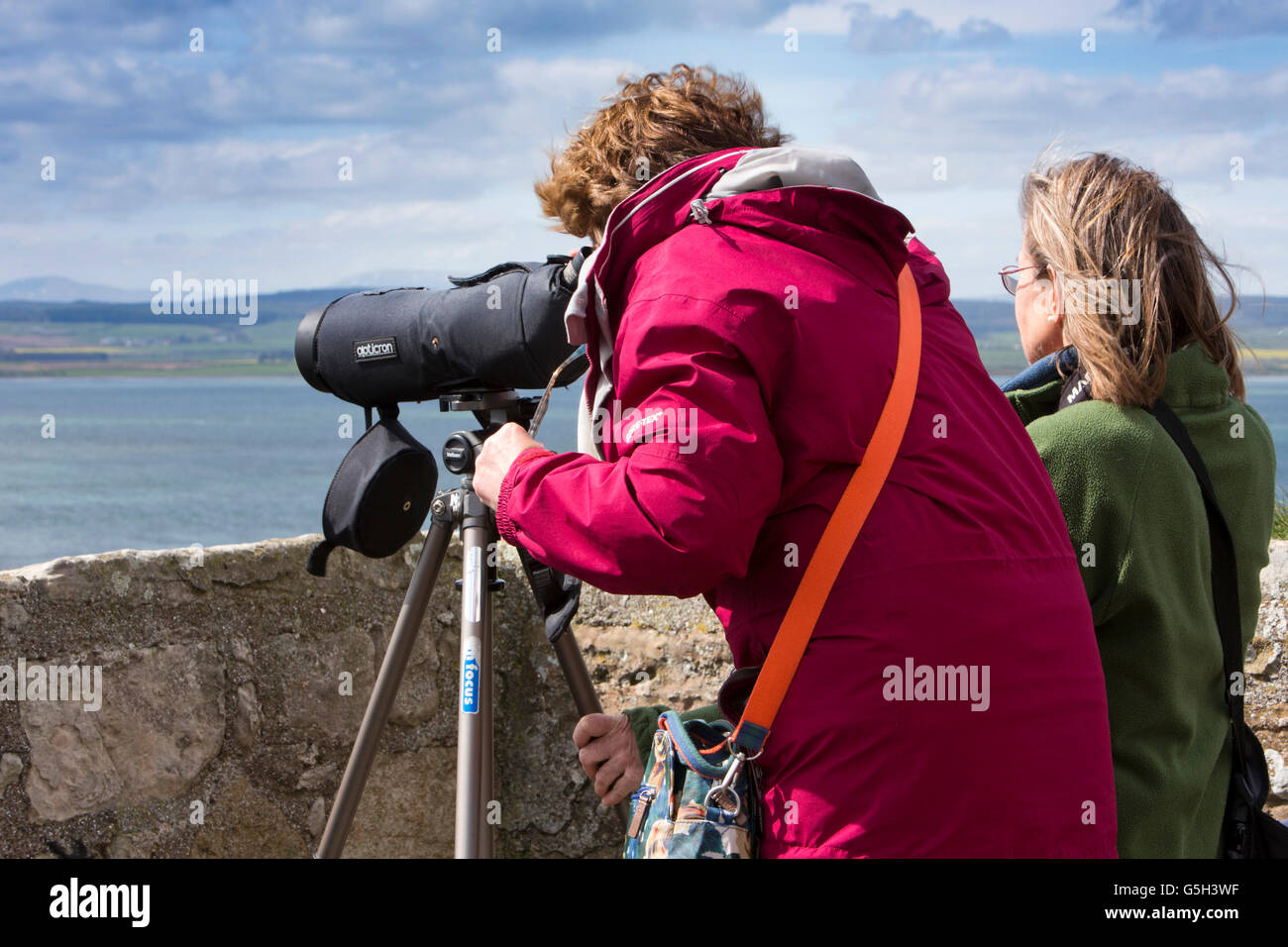 UK, England Northumberland, Holy Island, Lindisfarne Castle, visitors observing seals through telescope from roof - Stock Image