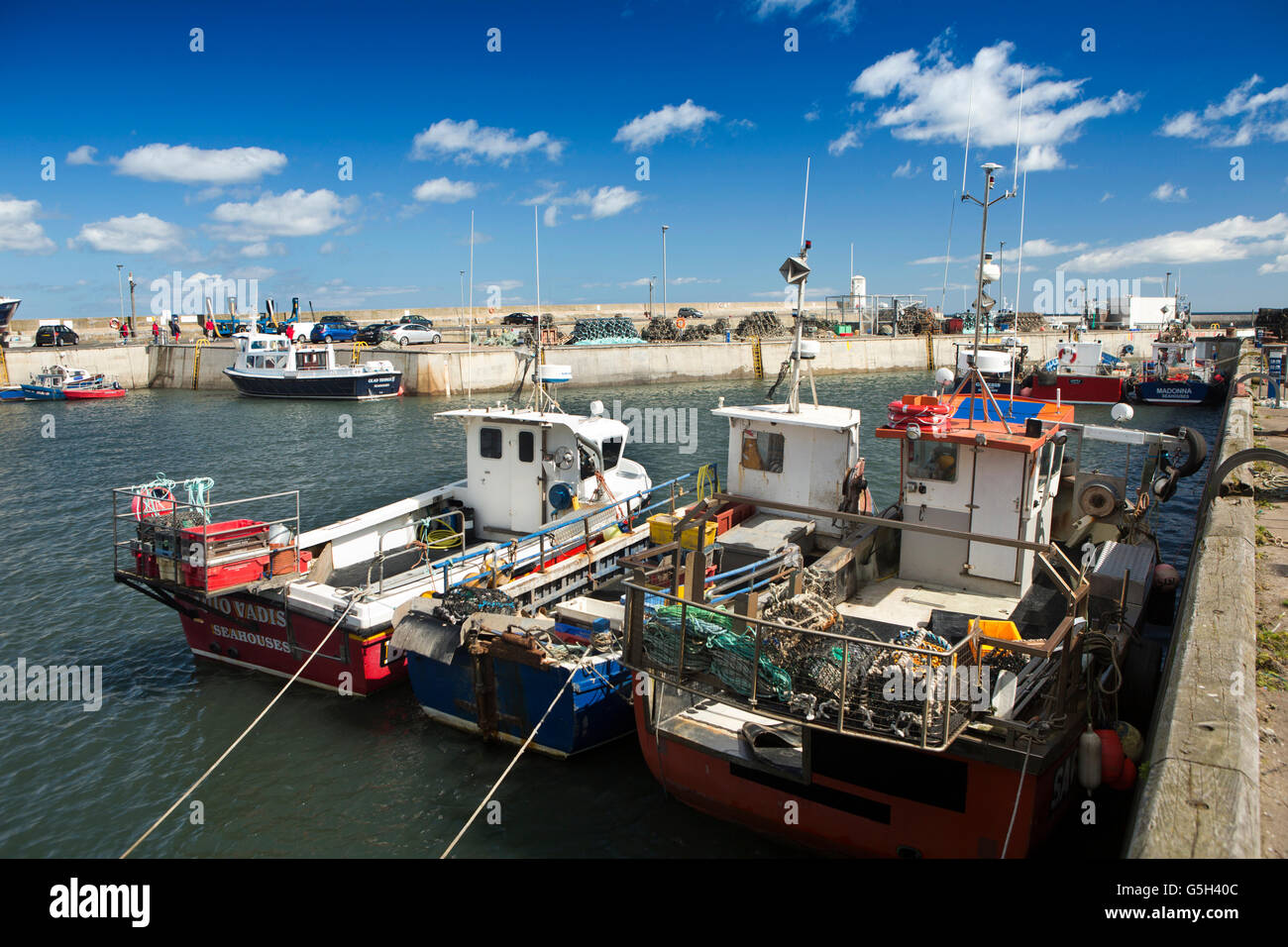 UK, England Northumberland, Seahouses Harbour, fishing and day trip craft at quayside - Stock Image
