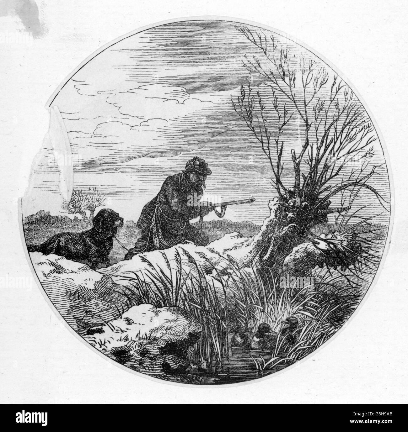 hunting, ducks, duck hunting, wood engraving, 19th century, 19th century, graphic, graphics, half length, hunter, Stock Photo