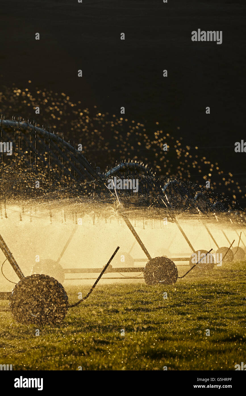 Centre pivot irrigation, near Twizel, Mackenzie District, South Canterbury, South Island, New Zealand - Stock Image