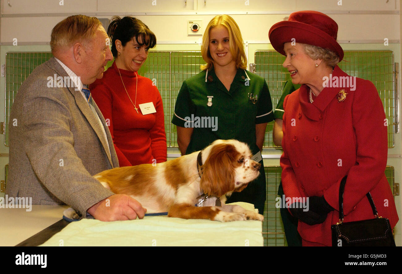 Queen Visits Animal Hospital - Stock Image