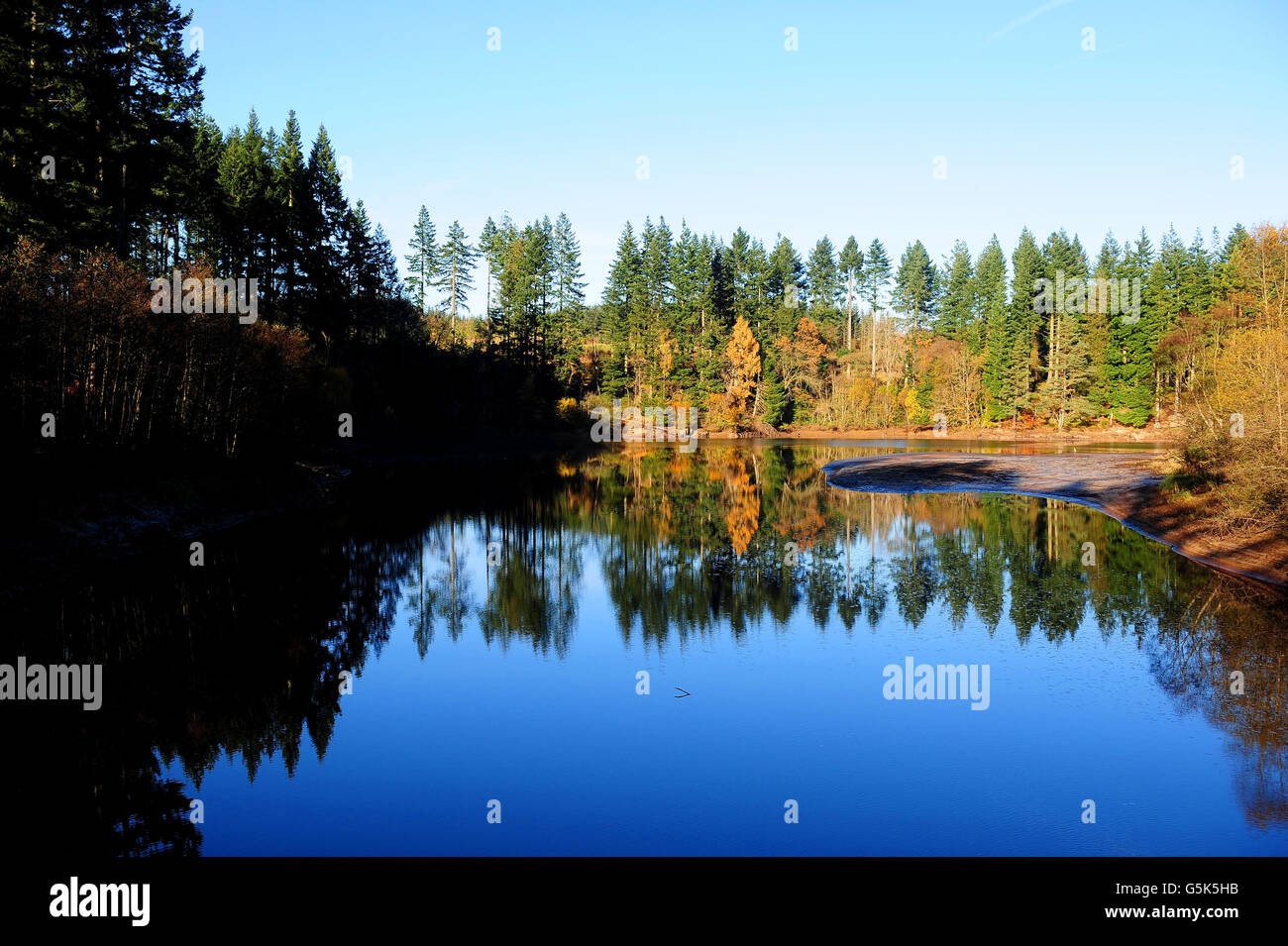 Autumn weather Nov 5 - Stock Image