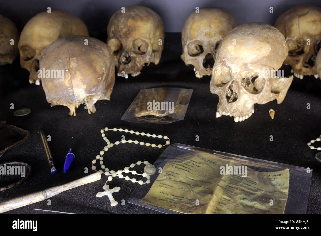 Skulls of murdered Tutsis during the genocide of 1994, Kigali Memorial Centre, genocide museum of Kigali, Rwanda, - Stock Image