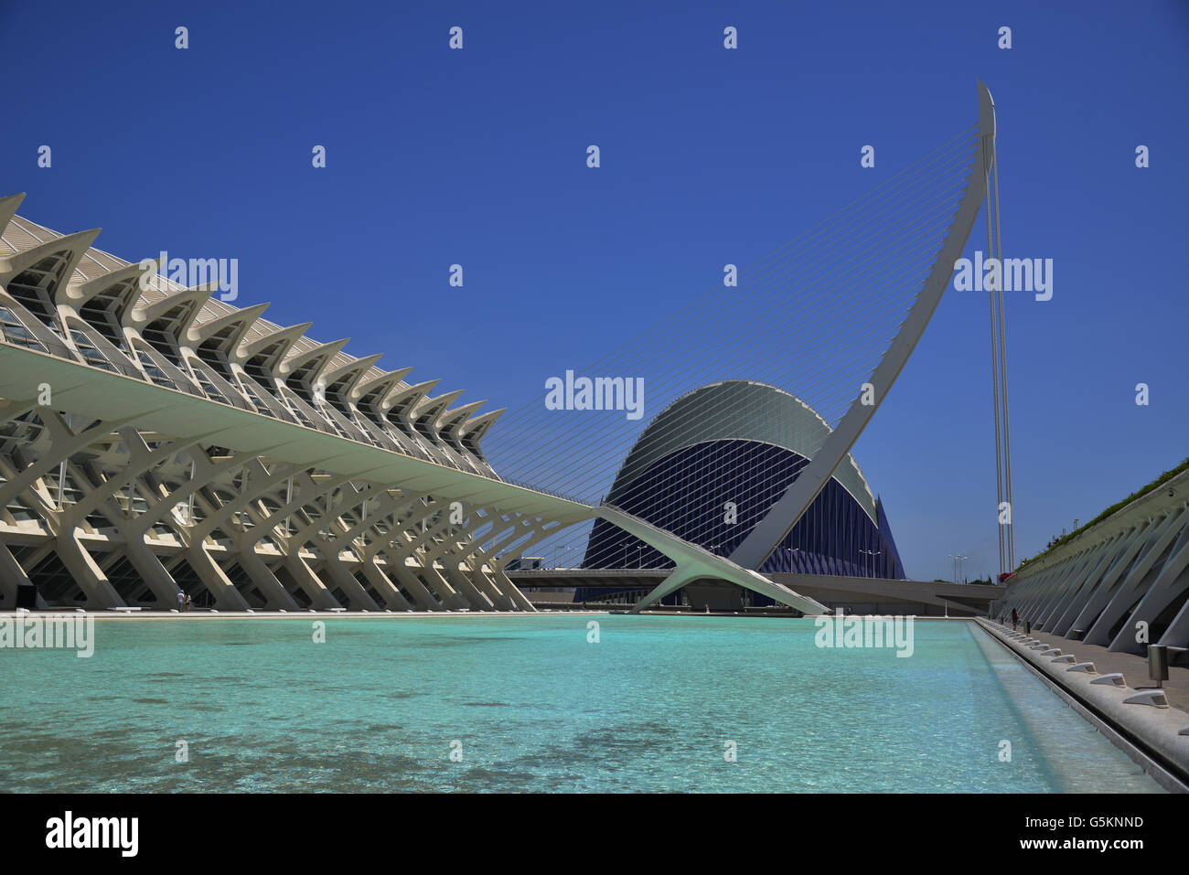 El Museu de les Ciencies Principe Felipe and L' Agora in the City of Arts and Sciences in Valencia by famous - Stock Image