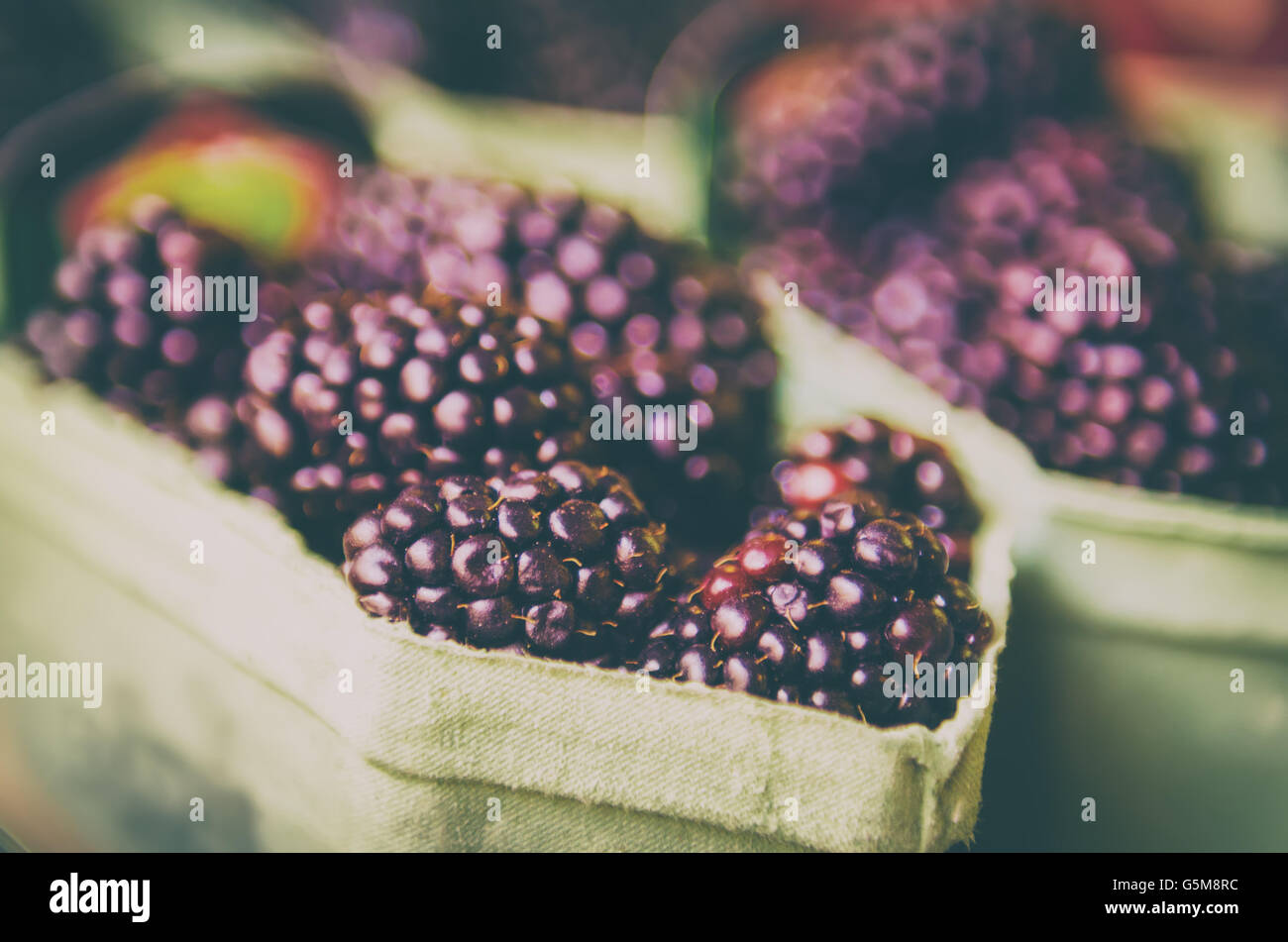Blackberry at market - Stock Image