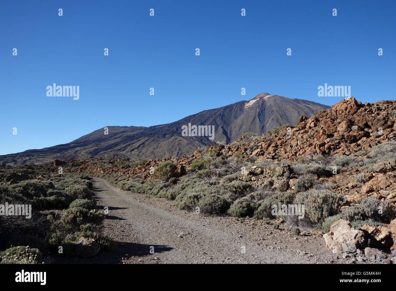 View on Pico Teide from Rura de las Canadas, Parque National del Teide, Tenerife - Stock Image